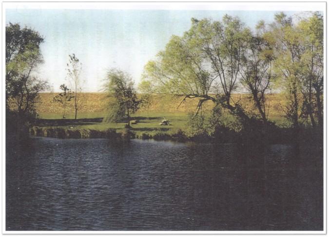 Boyd's Pond